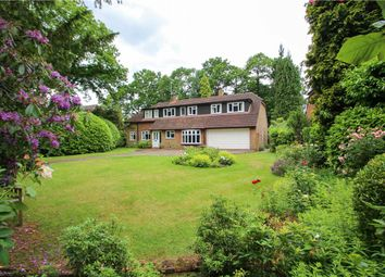 Thumbnail 4 bedroom detached house for sale in Hillcrest Road, Camberley, Surrey