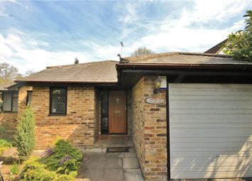 Thumbnail 4 bed detached house to rent in Oak End Way, Woodham, Surrey