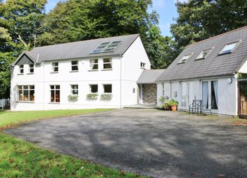 Thumbnail 6 bed detached house for sale in Warrens Field, Camelford