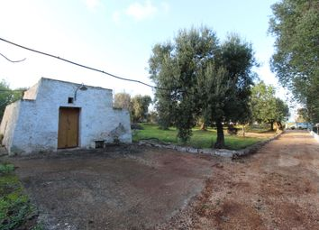 Thumbnail Land for sale in Contrada Sierri, Carovigno, Brindisi, Puglia, Italy