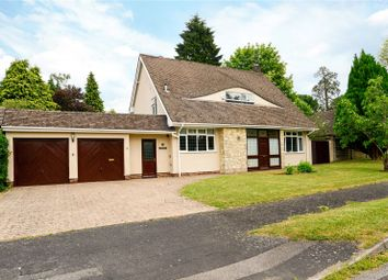 Thumbnail 4 Bed Detached House For Sale In Chiltley Way Liphook Hampshire