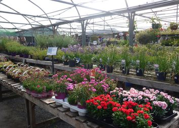 Thumbnail Commercial property for sale in Garden Centre & Horticulture LS18, West Yorkshire