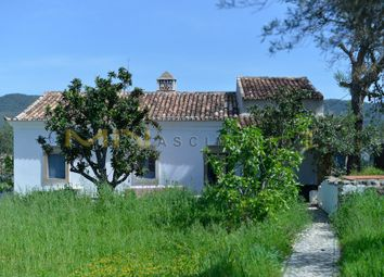 Thumbnail 3 bed country house for sale in At 9 Minutes From Loulé, Querença, Tôr E Benafim, Loulé, Central Algarve, Portugal