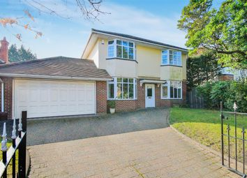 Thumbnail 4 bedroom detached house to rent in St. Albans Avenue, Bournemouth