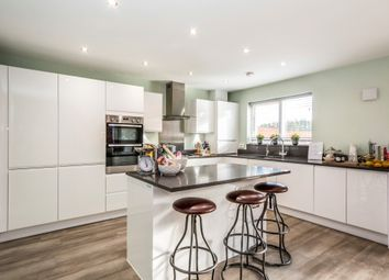 Thumbnail 4 bed detached house for sale in Gold Drive, Matchams, Ringwood