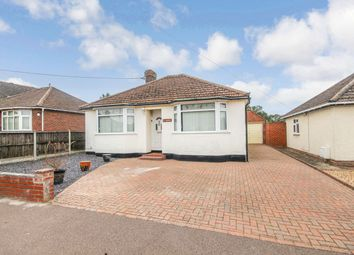 Thumbnail 2 bed detached bungalow to rent in New Road, Gosfield, Halstead