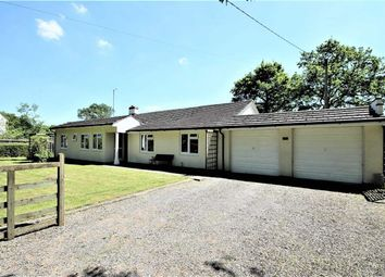 Thumbnail 4 bed detached bungalow for sale in Buryhill Farm, Braydon, Swindon