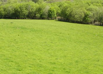 Thumbnail Farm for sale in Part Of Hafodymaidd, Pumpsaint, Llanwrda