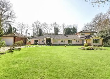 Thumbnail 3 bed detached bungalow for sale in Sunningdale, Berkshire