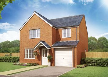 "Thumbnail 4 bed detached house for sale in ""The Roseberry"" at Coquet Enterprise Park, Amble, Morpeth"