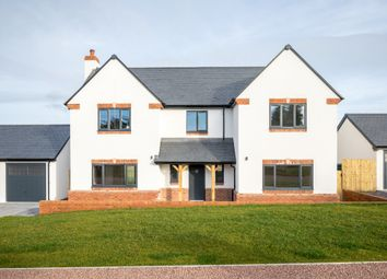Thumbnail 4 bedroom detached house for sale in Bromsash, Ross-On-Wye