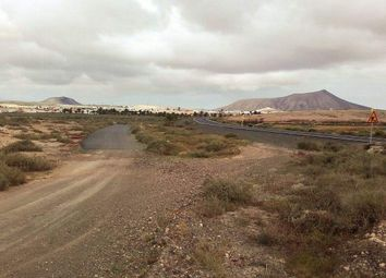 Thumbnail Land for sale in La Oliva, Las Palmas, Spain