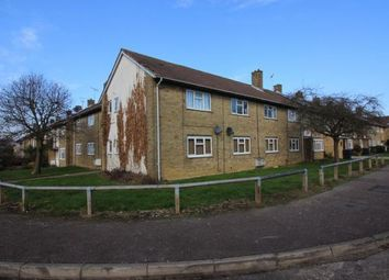 2 bed property to rent in Arkwrights, Harlow CM20