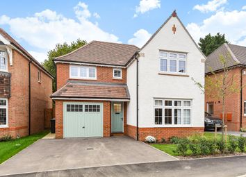 Thumbnail 4 bed detached house to rent in Bisley, Woking
