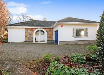 Thumbnail 3 bed detached bungalow for sale in Merrivale Close, Torquay