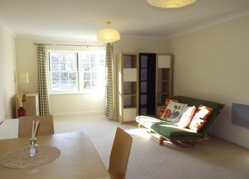 Thumbnail 2 bedroom flat to rent in Blackwell Close, London