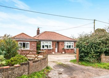 Thumbnail 5 bed detached bungalow for sale in Hale Road, Bradenham, Thetford