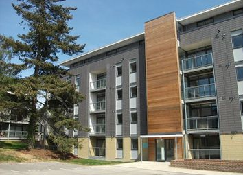 Thumbnail 2 bed flat to rent in Newsom Place, St Albans