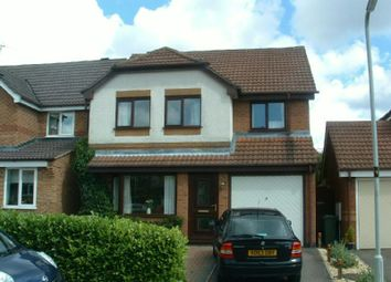 Thumbnail 4 bed detached house to rent in Eider Close, Whetstone, Leicester