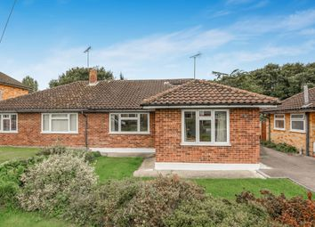 Thumbnail 3 bed bungalow to rent in Cootes Avenue, Horsham