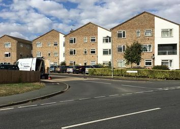 Thumbnail Commercial property for sale in Maytree Court, Walnut Tree Way, Tiptree, Colchester