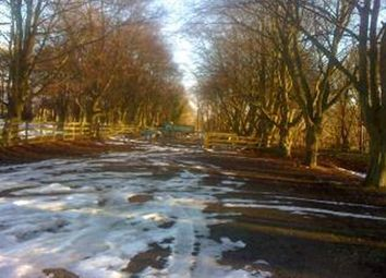 Thumbnail Industrial for sale in Kirkdale Manor, Nawton & Beadlamhelmsley, North Yorks