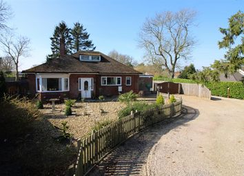 Thumbnail 4 bed detached bungalow for sale in Mill Road, Salhouse, Norwich