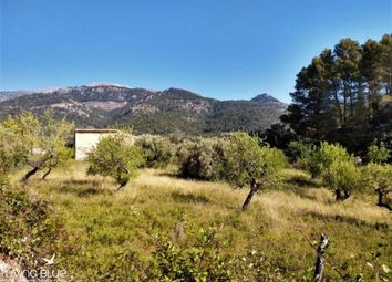 Thumbnail Land for sale in Selva, Mallorca, Spain