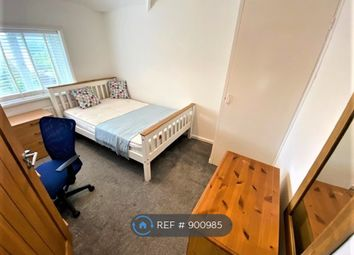 Manor Road, Brighton BN2. Room to rent