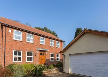 Thumbnail 4 bed detached house for sale in Monterey Park, Newton Abbot