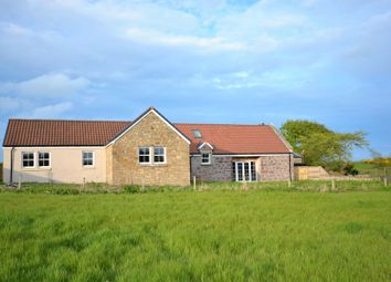 Thumbnail 4 bed detached bungalow for sale in Newbigging, Fossoway