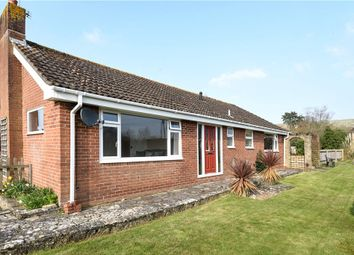 Thumbnail 4 bed detached bungalow for sale in Homefield, Child Okeford, Blandford Forum