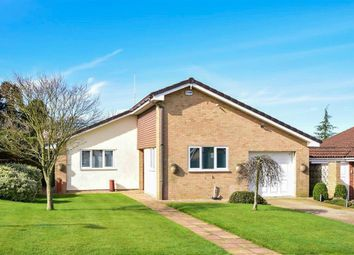 Thumbnail 3 bedroom detached bungalow for sale in Beauxfield, Whitfield, Dover, Kent