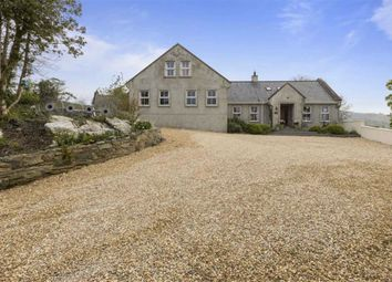 Thumbnail 4 bedroom detached house for sale in Drumsnade Road, Ballynahinch, Down