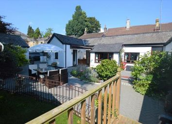 Thumbnail 4 bed detached bungalow for sale in Plymouth Road, Buckfastleigh, Devon