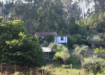 Thumbnail 4 bed finca for sale in Cabeçudo, Cabeçudo, Sertã