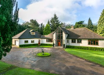 Thumbnail 6 bed detached house for sale in Hall Lane, Sutton, Macclesfield, Cheshire