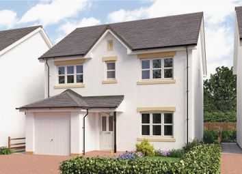 "Thumbnail 4 bedroom detached house for sale in ""Shaw"" at Glendee Road, Renfrew"