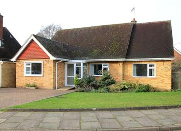 Thumbnail 4 bed bungalow for sale in Cuckfield Avenue, Ipswich