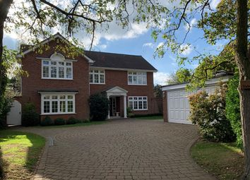 Thumbnail 5 bedroom detached house for sale in Lodge Avenue, Great Baddow, Chelmsford