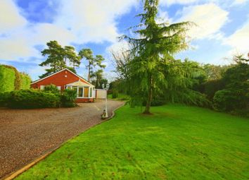 Thumbnail 3 bed detached bungalow for sale in Betton Road, Market Drayton