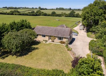 Thumbnail 3 bed detached bungalow for sale in Fifehead St. Quintin, Sturminster Newton, Dorset