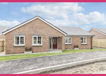 Thumbnail 3 bedroom detached bungalow for sale in Plot 13, Maes Y Llewod, Bancyfelin