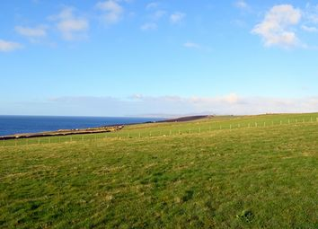 Thumbnail Land for sale in Mid Clyth, Caithness