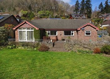 Thumbnail 4 bedroom bungalow for sale in Llwyn Bedw, 2, Plas Hafren, Milford Road, Newtown, Powys