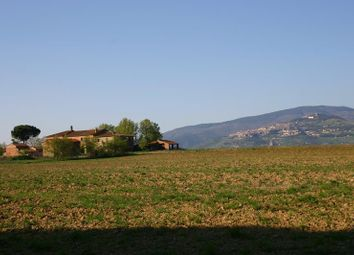 Thumbnail Country house for sale in Cortona, Toscana, Italy