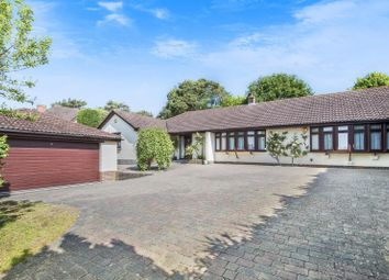 Thumbnail 4 bed detached bungalow for sale in Private Development, Secluded Garden, Nr West Chiltington Shops