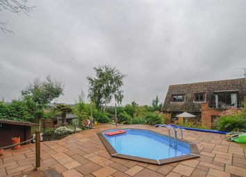 Thumbnail 4 bed property for sale in Whitehall Close, Nazeing, Essex