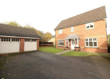 Thumbnail 4 bed detached house to rent in Daffodil Lane, Rogerstone, Newport