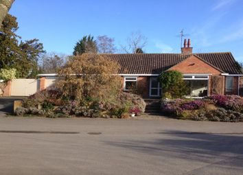 Thumbnail 3 bed bungalow for sale in Church Lane, Broadwas, Worcester